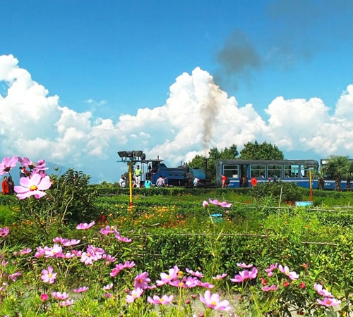 Darjeeling Package for 02 Nights