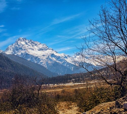 Discover the Vibrant Beauty of Sikkim