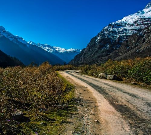 Yumthang Gangtok Darjeeling Pelling Discover Sikkim in 09 Days Packages