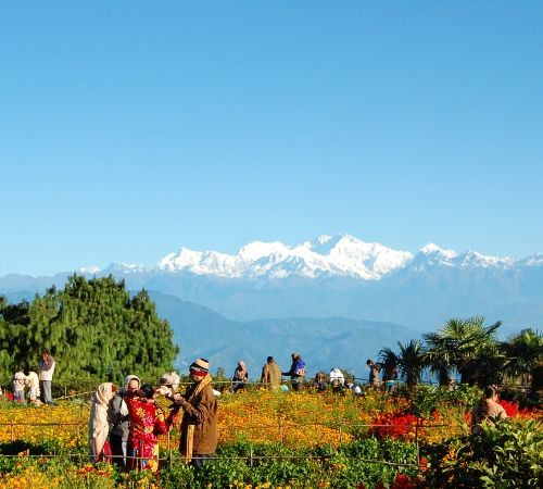Peling Gangtok Darjeeling Tour Package